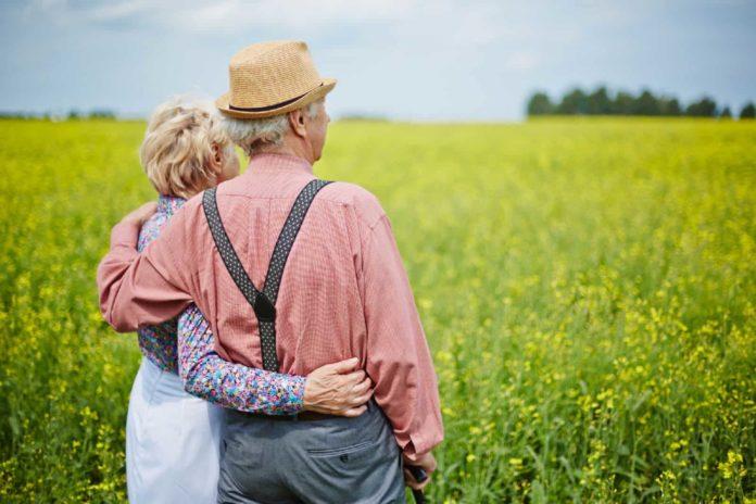 Изображение - Льготы по земельному налогу для пенсионеров 14-696x464