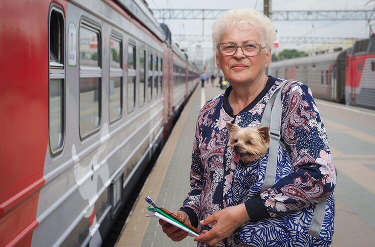 Оформление льготного проездного для пенсионеров